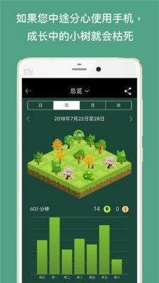 Forest(专注森林)图3